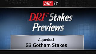 Gotham Stakes Preview 2019