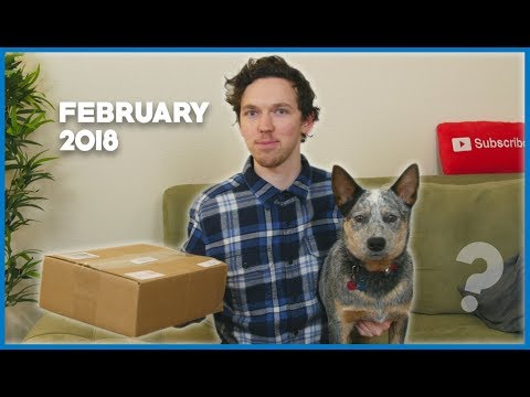 Unboxing Haul With Arlo the Phone Dog! (February 2018)