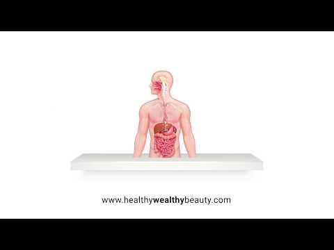 Maintain Digestive Balance