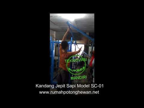 Kandang Jepit Sapi Model SC 01