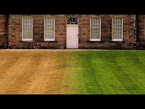 Photoshop Quick Tip Tutorial: How to Make Burnt-out, Brown GRASS into a Lush, Green LAWN