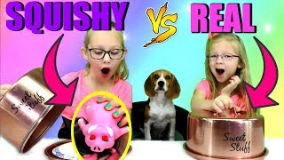 Download SQUISHY vs REAL FOOD CHALLENGE!!! Video