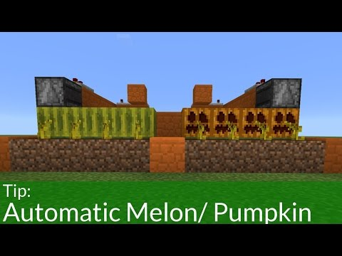 How to Build an Automatic Melon & Pumpkin Farm in Pocket Edition