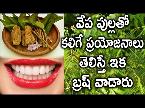 Neem Sticks makes you avoid Brush   Natural ToothPaste and ToothBrush   Health Tips in Telugu