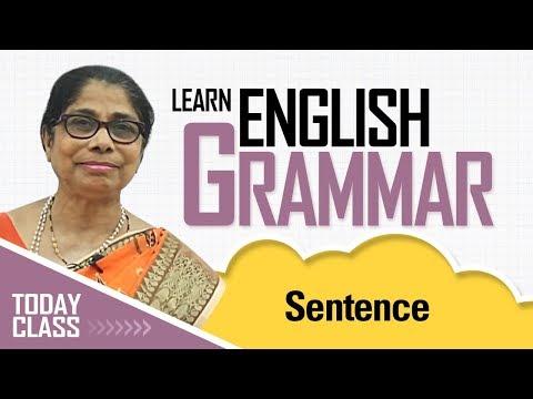 Learn English Grammar | Sentence | Basic English Grammar for kids