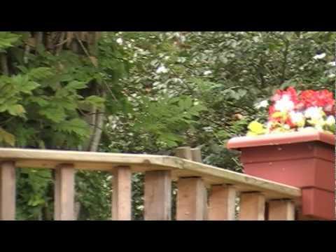 Planter Boxes on Deck Railing