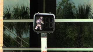 How Traffic Lights Work | SciTech Now