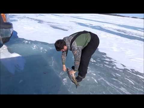 ICE FISHING 2018. Catching Northern Pike.