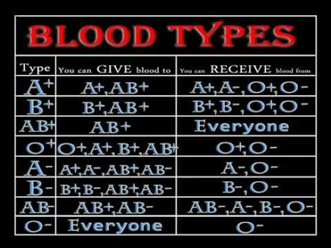 Blood Types - The Easy Way to Remember (about 11mins)