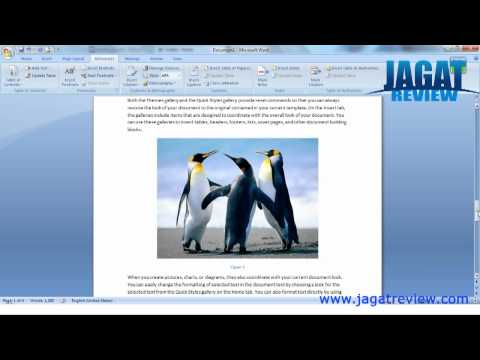 Microsoft Word 2007 - Automatic Image 's Table of Content
