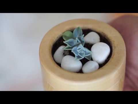 DIY weekend project: wooden flower pot