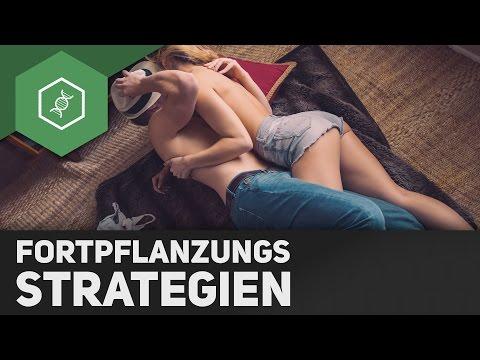 Fortpflanzungsstrategien - R-Strategen und K-Strategen im Vergleich