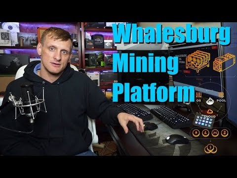 Whalesburg | Enterprise Ready Platform for Cryptocurrency Miners