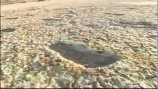 The Willandra Footeps - SE Australia, 20,000 year old human footprints