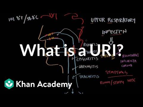 What is an upper respiratory infection (URI)? | NCLEX-RN | Khan Academy