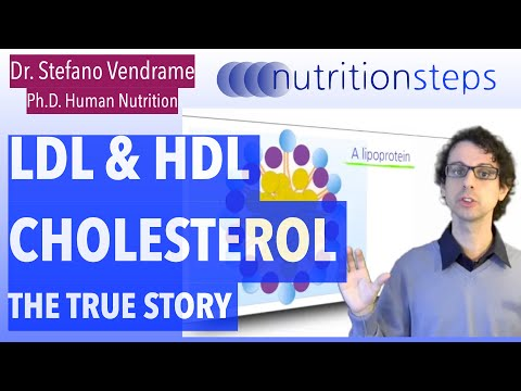 The True Story of LDL and HDL Cholesterol