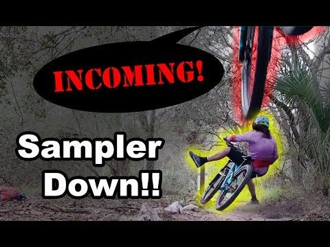 Riding bikes with The Sampler