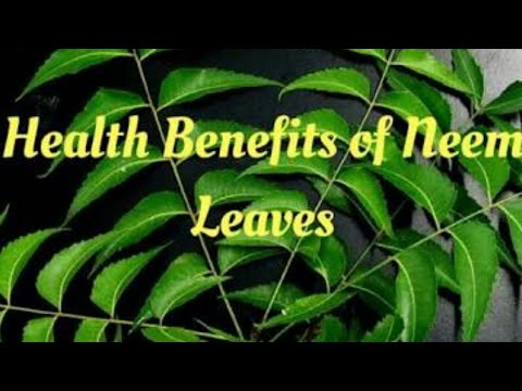 Get rid of uterus problem/lecuriah,over bleeding and pain during periods with Neem.