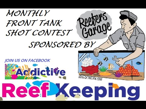 Front Tank Shot Contest Sponsored By Reefer's Garage!!! Addictive Reef Keeping