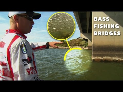 How to Methodically Bass Fish a Bridge