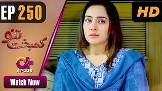 Pakistani Drama | Kambakht Tanno - Episode 250 | Aplus ᴴᴰ Dramas | Tanvir Jamal, Sadaf Ashaan