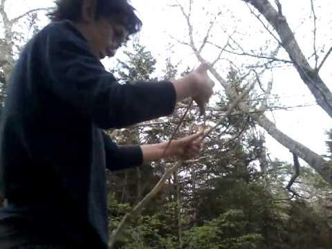 Elven Bow Attempt