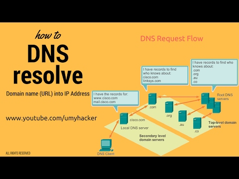 How a URL is converted into IP Address