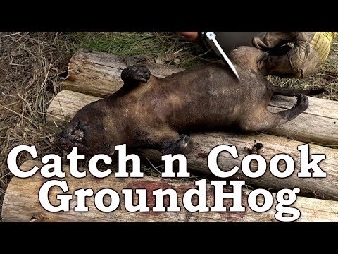 Catch n Cook GROUNDHOG! | HAIR SINGE - YUCK?!?! | Primitive HADZA Method | Nose to Tail