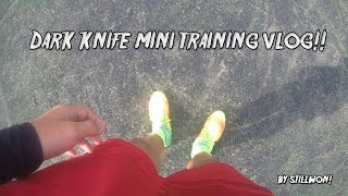 Dark Knife Mini Training Vlog #1 | 07.05.17 | VLOG #1