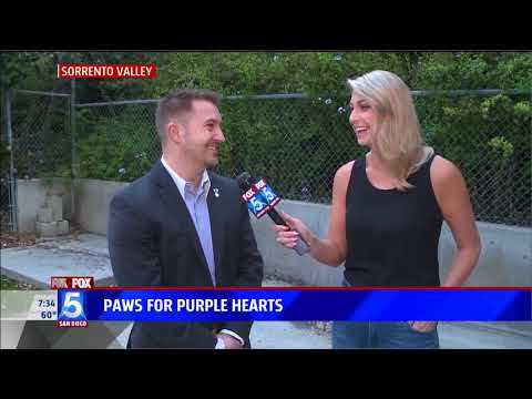 Fox 5 Features Paws for Purple Hearts