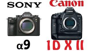 Sony Alpha α9 vs Canon EOS-1D X Mark II