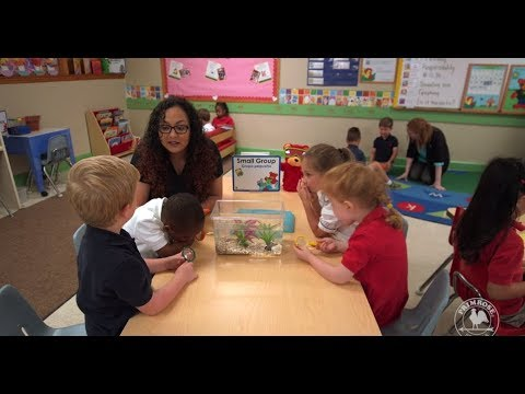 Teamwork for Kids: An Executive Function Skill