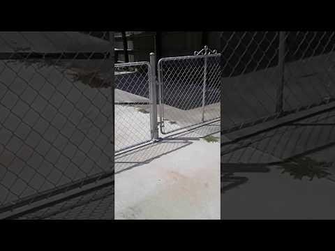Chain link driveway gates