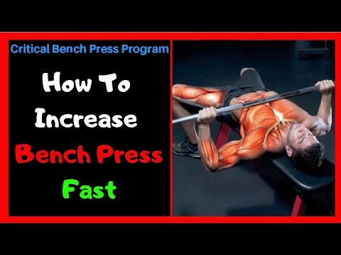 How To Increase Bench Press MAX Fast | Bench Press Program Review!