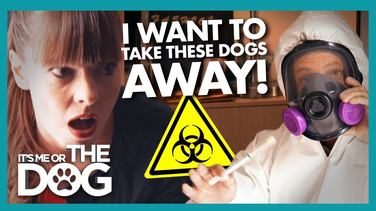 """""""Worst Dog Owner Ever' Has Victoria Threatening to Take Pets Away 
