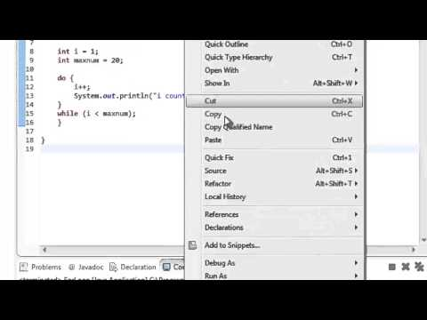Java Tutorial 5: While and Do While Loop