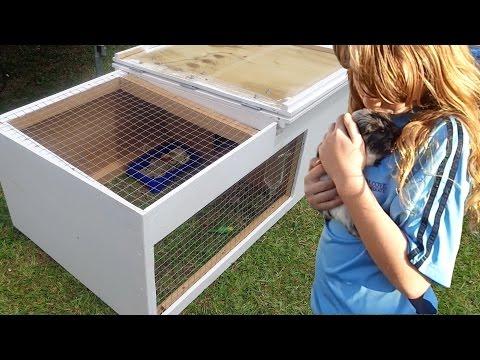 How to build a guinea pig hutch