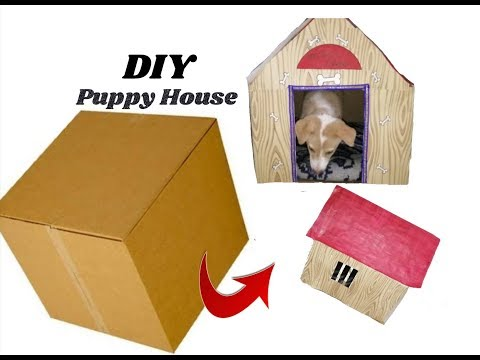 Puppy house / kennel making with cardboard box