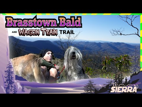 Brasstown Bald & the Wagon Train Trail!
