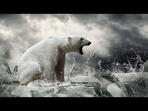 Daily Orbit - Save the Polar Bears