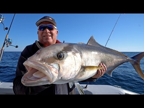 Multi-Species Reef Fishing in Destin Florida
