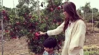 Shilpa Shetty Dalimb Funny Video