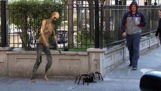 Big Spider Attack In The City Prank - 4K (Reality Pranks 4k)