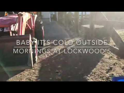 Weekend Farmgirl: Lockwood's Ranch - Baby It's Cold Outside