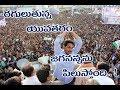 Y S Jagan Raguluthunna Yuvatharam Video Song Prajasankalpa Yatra Rayalaseema Television mp3