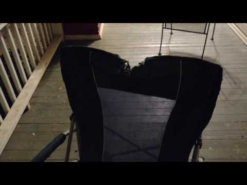 Dobermans destroyed my front porch :)
