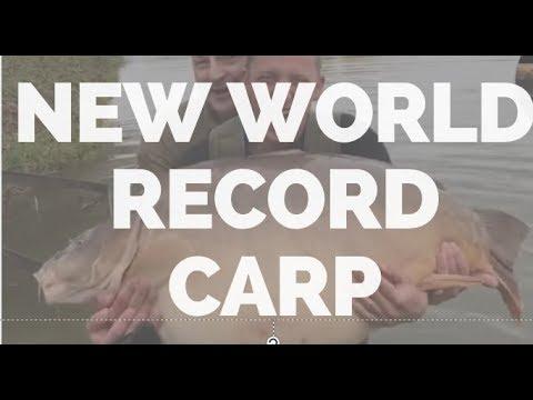 New World Record Carp MONSTER 49kg (108lbs) -BIGGEST CARP IN THE WORLD - เป็นปลามอนสเตอร์
