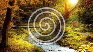 Soft Touch - Total Meditation By Lynn Wright (purerelax.tv)
