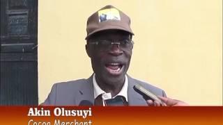 ONDO STATE: FALL IN PRICE OF COCOA