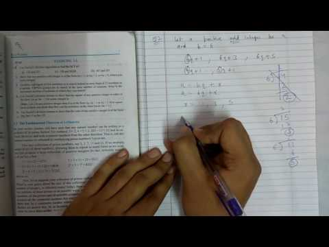 Chapter 1 real numbers maths class 10 exercise 1.1 || NCERT|| Math Tutor
